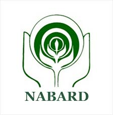Image result for nabard logo